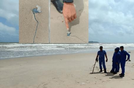 Obor-obor beracun ditemui di pesisir Pantai Pulau Kekabu