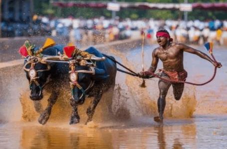 Pekerja binaan India tewaskan rekod Usain Bolt