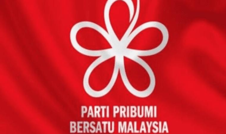 Parti Pribumi Bersatu Malaysia flag