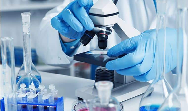 Stem cell research has been successful by Abu Dhabi Stem Cell Center