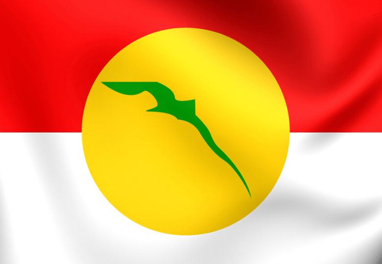 UMNO flag